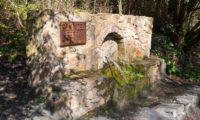 Pineda-Mar-ruta-origens-6