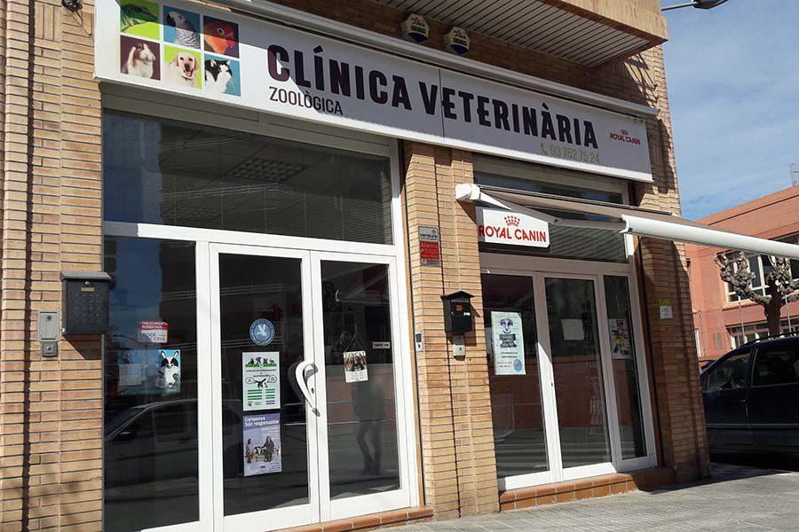 Clínica veterinària zoològica